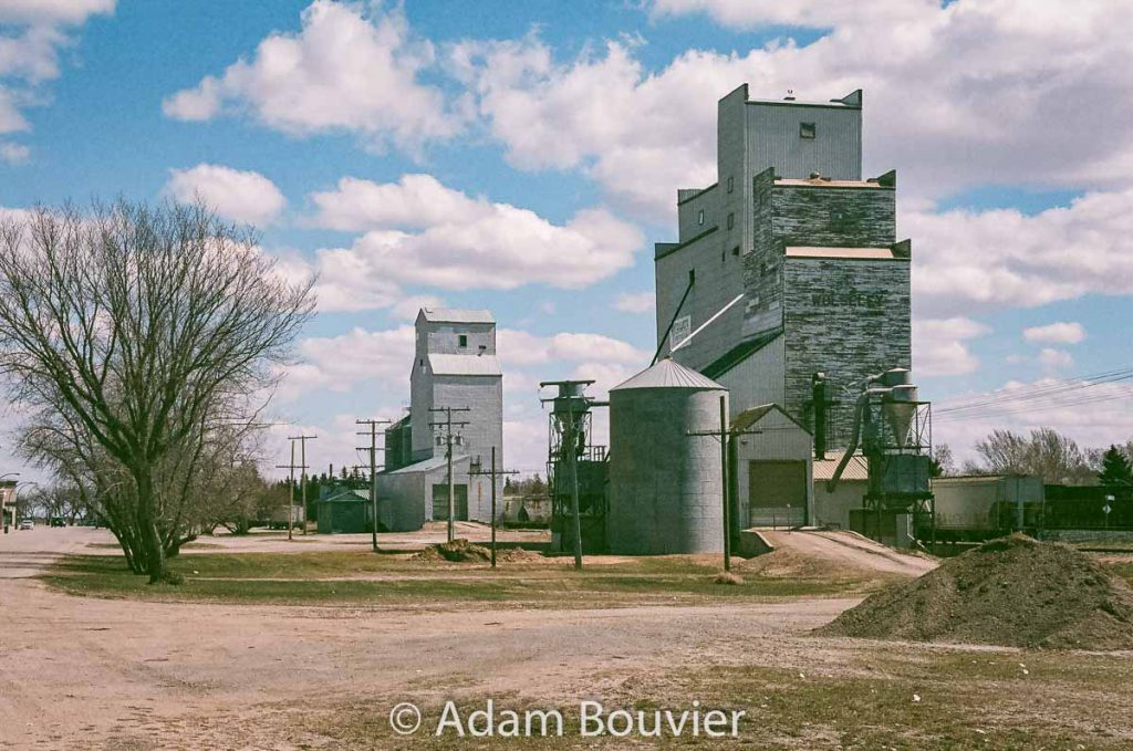 The grain elevators in Wolseley, SK, April 2017. Contributed by Adam Bouvier.