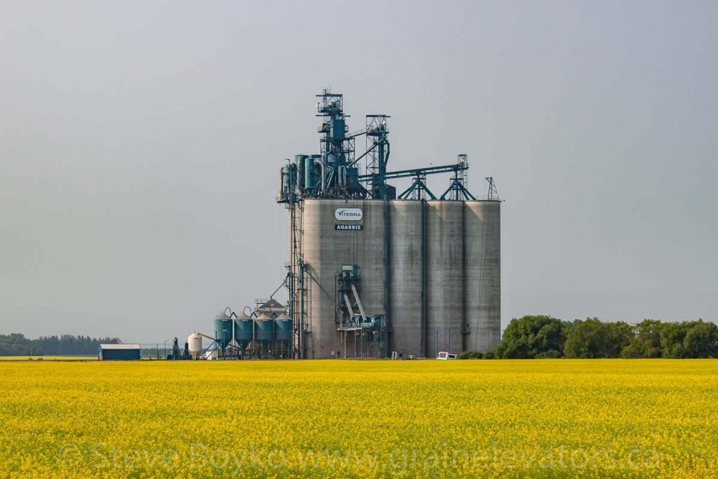 The Viterra grain elevator at Agassiz, between Morden and Winkler, MB. July 2014.