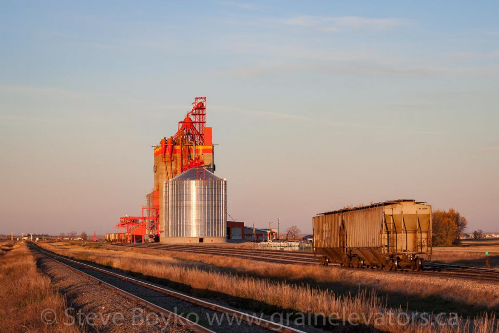 Pioneer grain elevator near Stirling, AB. October 2015.