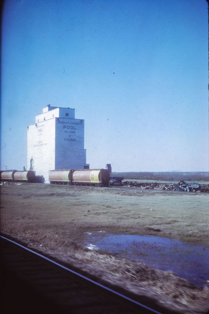 Young, SK grain elevator, 1972. Contributed by Eric May.