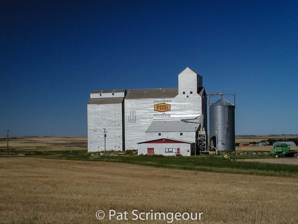 Mossbank, SK grain elevator, September 2002. Contributed by Pat Scrimgeour.