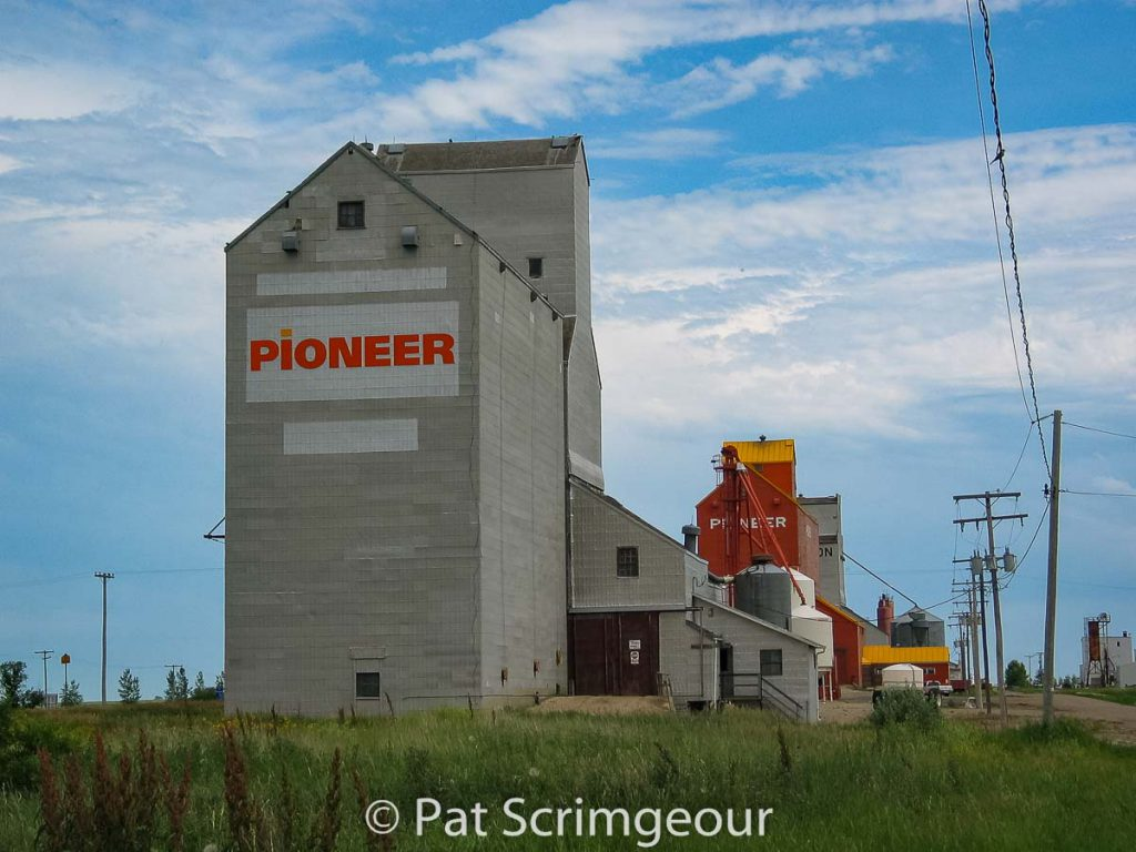 Grain elevators in Wilcox, SK, July 2005. Contributed by Pat Scrimgeour.