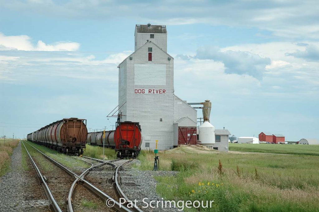 """Rouleau, SK aka """"Dog River"""" grain elevator, July 2005. Contributed by Pat Scrimgeour."""