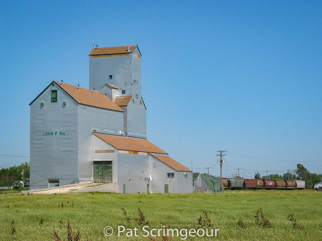 Lowe Farm, MB grain elevator, July 2005. Contributed by Pat Scrimgeour.