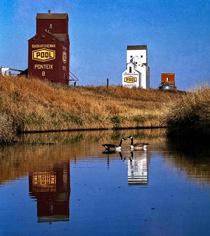Grain elevators at Ponteix, SK. Copyright by Bob St. Cyr.