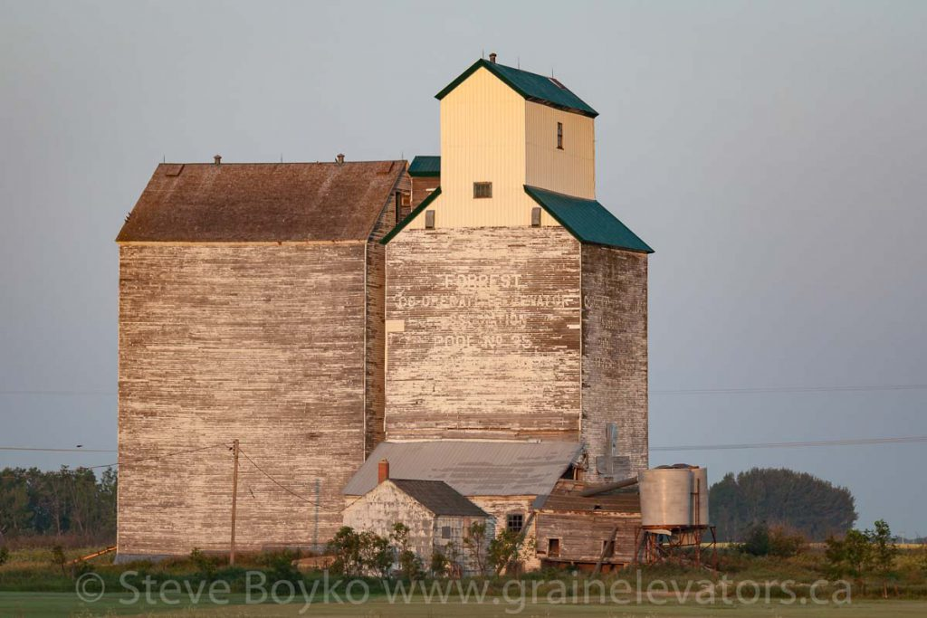 Forrest, MB grain elevator, Aug 2014. Contributed by Steve Boyko.