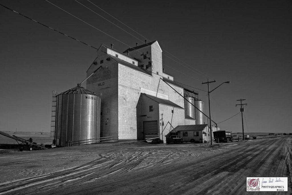 Milo, AB grain elevator, December 2014. Contributed by Jason Paul Sailer.
