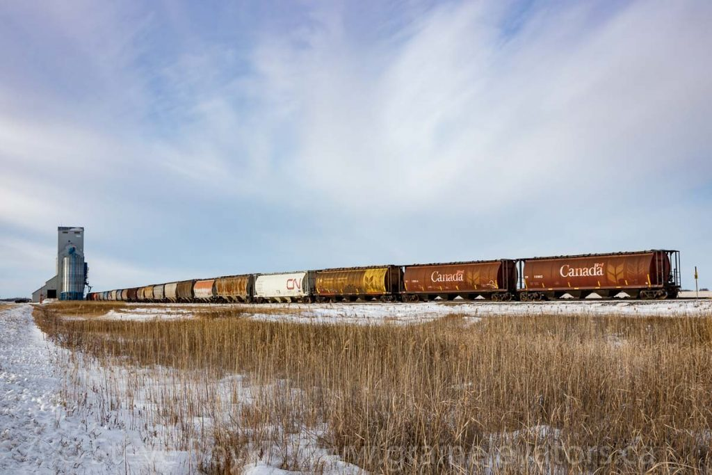 Grain cars at the Norman, MB grain elevator, Dec 2017. Contributed by Steve Boyko.