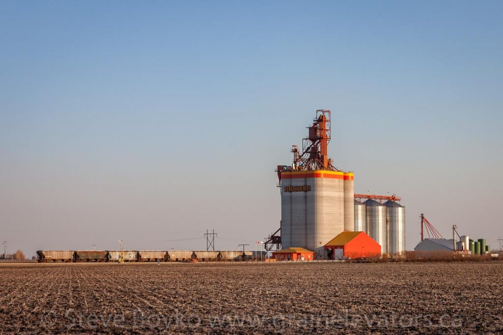 The Pioneer grain elevator at Mollard outside Brunkild, MB, May 2015. Contributed by Steve Boyko.