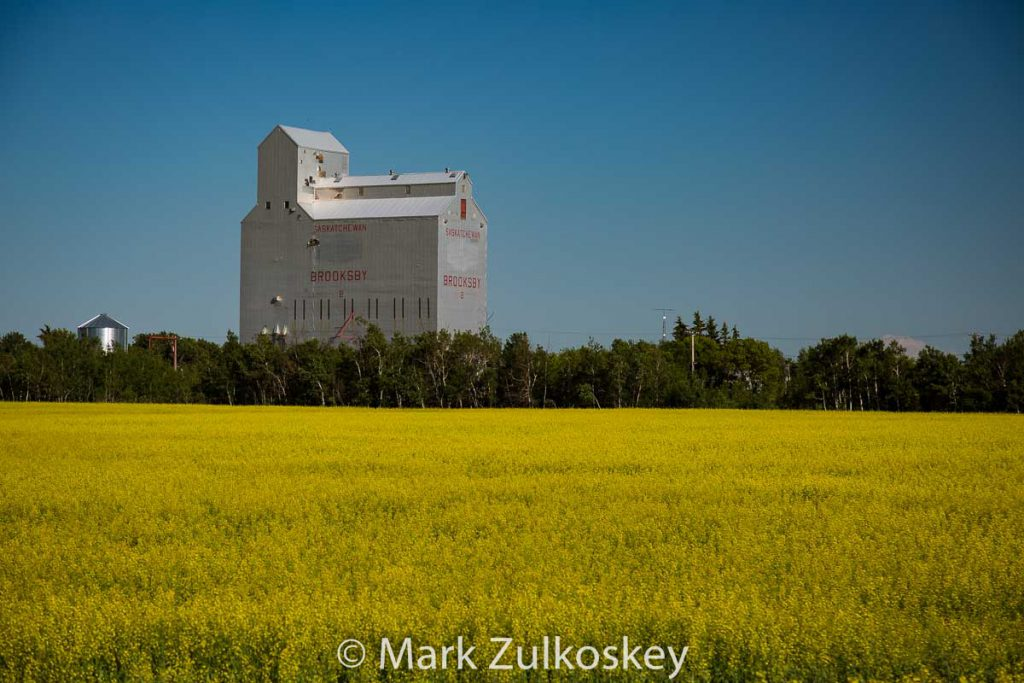 Brooksby, SK grain elevator. Contributed by Mark Zulkoskey.