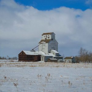 Grain elevator in Bardo, AB. Copyright by BW Bandy.