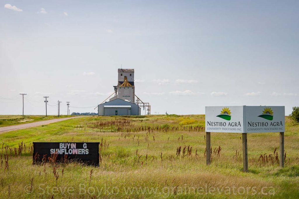 Nestibo Agra grain elevator outside Deloraine, MB, Aug 2014. Contributed by Steve Boyko.