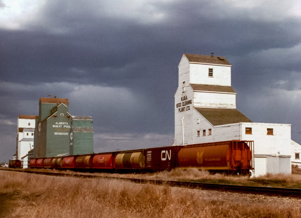 Beiseker, AB grain elevators, Apr 1983. Copyright by Robert Boyd.