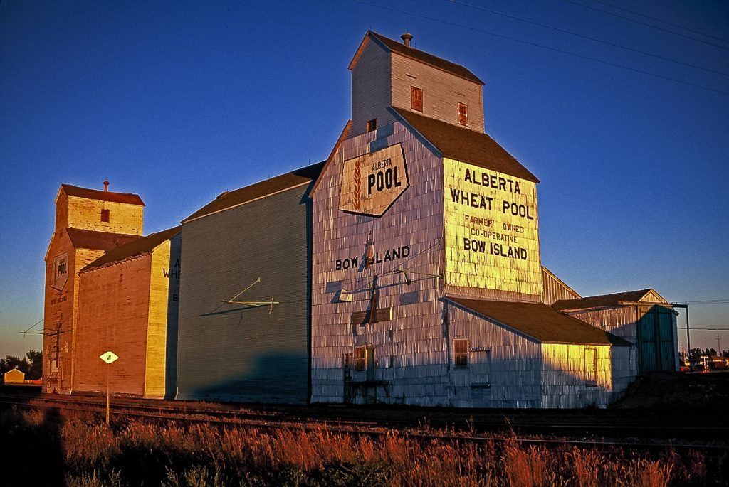 Bow Island, AB grain elevators, Sep 1995. Copyright by Gary Rich.