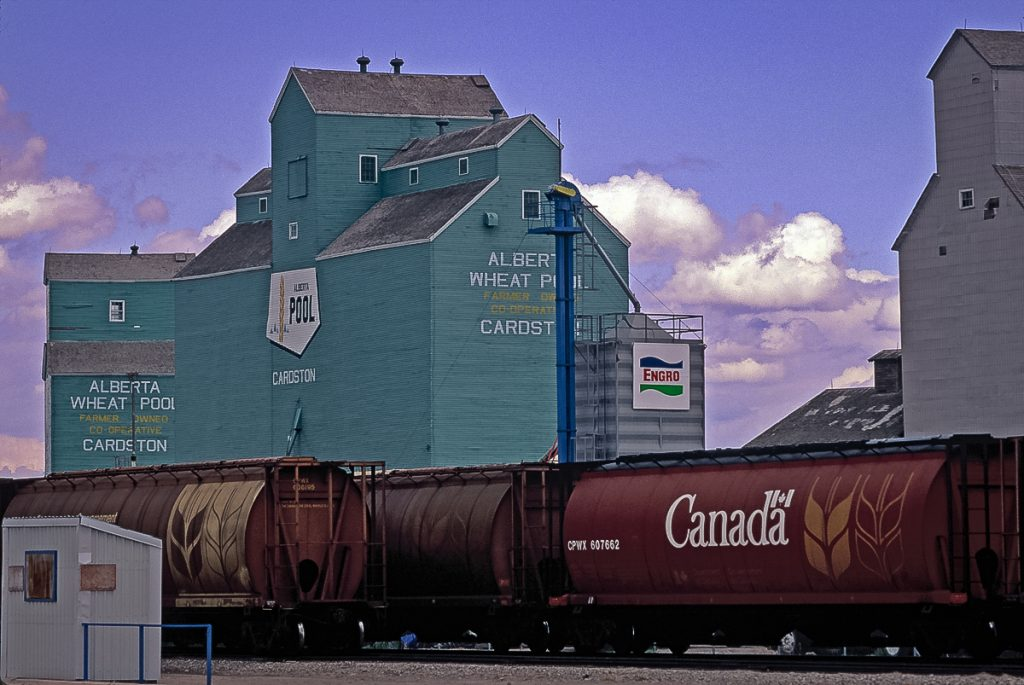 Alberta Wheat Pool grain elevator in Cardston, AB, May 1992. Copyright by Gary Rich.