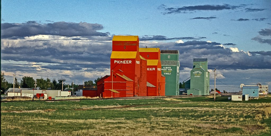 Stavely, AB grain elevators, May 1992. Copyright by Gary Rich.