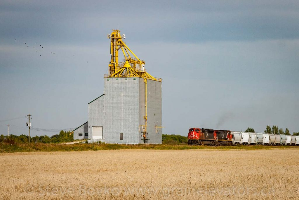 Train passing the Elie, MB grain elevator, Aug 2017. Contributed by Steve Boyko.