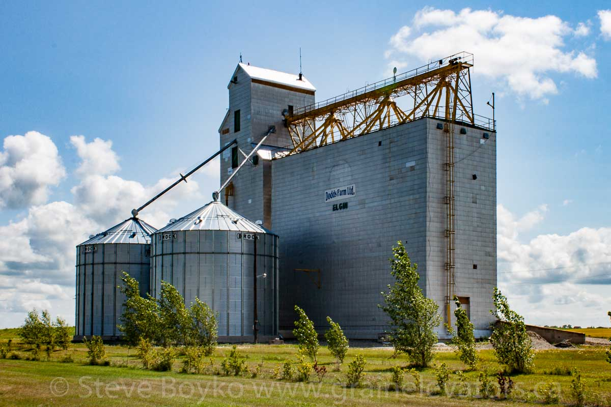 The grain elevator in Elgin, Manitoba, Aug 2014. Contributed by Steve Boyko.