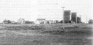 Pierson grain elevators circa 1897.