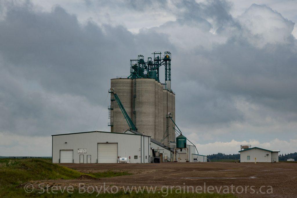 Viterra grain elevator near Trochu, AB, June 2018. Contributed by Steve Boyko.