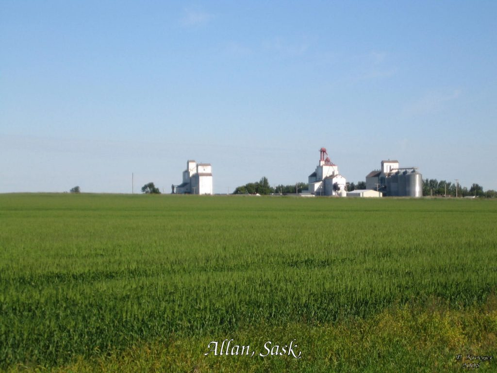 Grain elevators near Allan, SK. Copyright by Peter Kroeger.