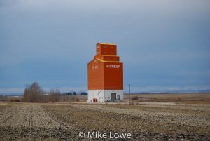Grain elevator near Olds, AB, Oct 2018. Contributed by Mike Lowe.