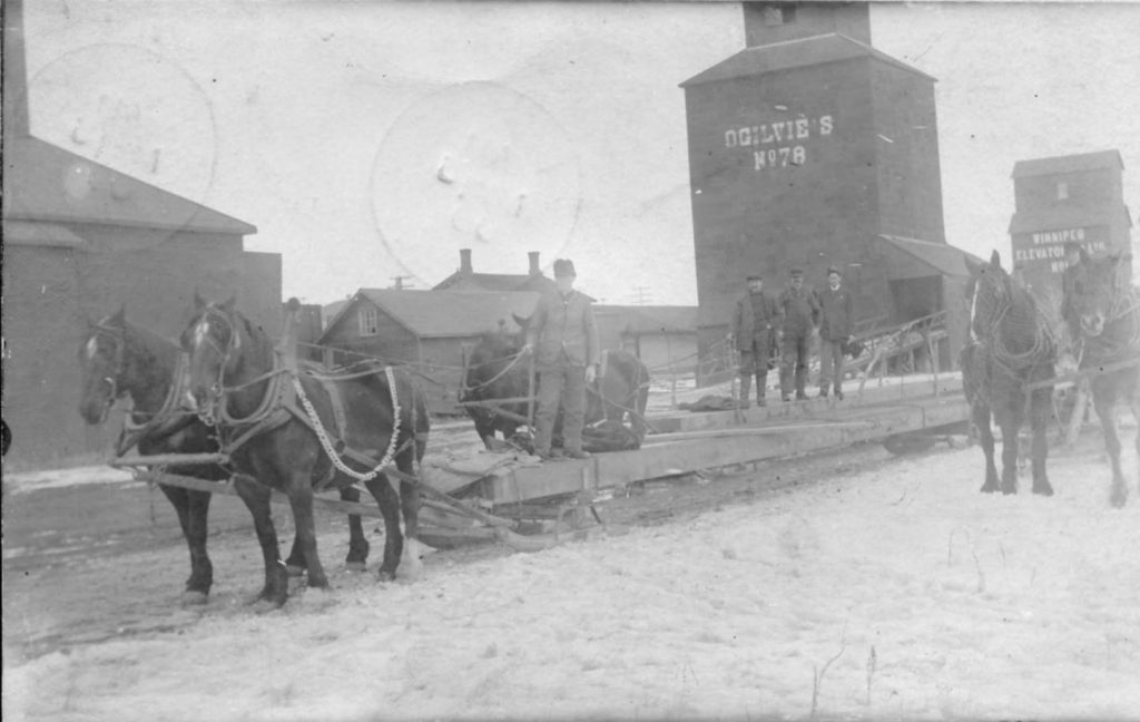 Grain elevators in Pense, SK, 1908.