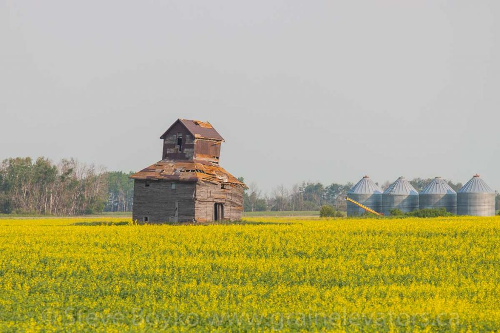 An old farm elevator near Purves, MB, July 2014. Contributed by Steve Boyko.