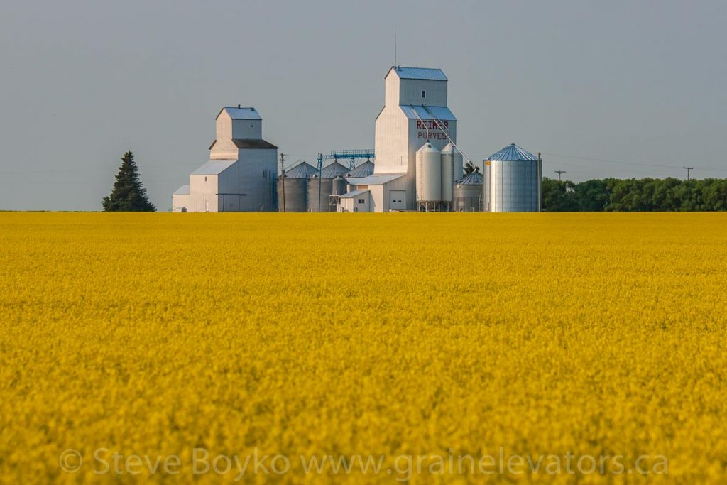 The grain elevators in Purves, MB, July 2014. Contributed by Steve Boyko.