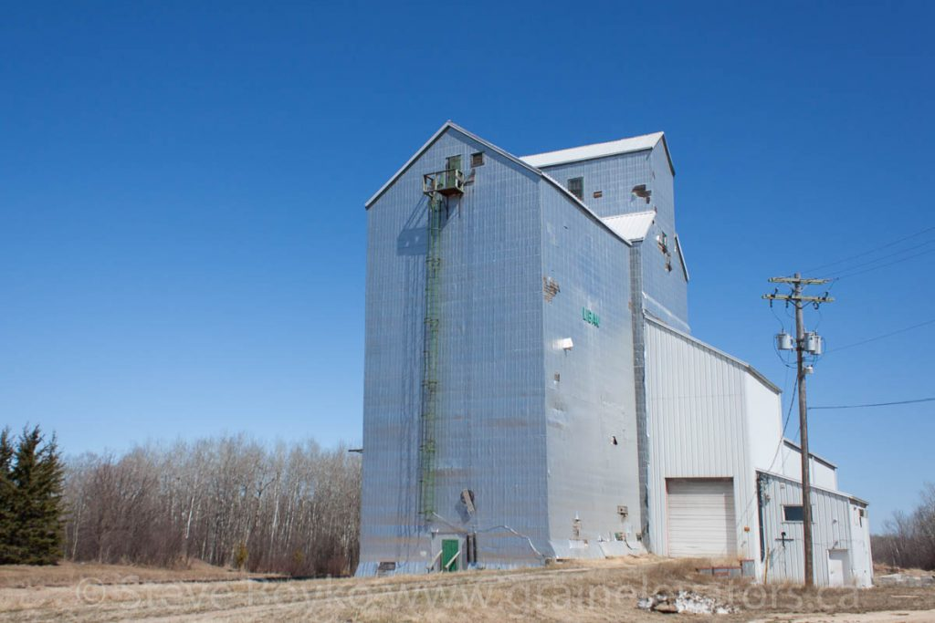 Libau, MB grain elevator, May 2013. Contributed by Steve Boyko.