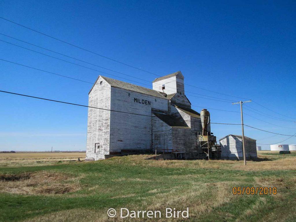The Milden, SK grain elevator, May 2019. Contributed by Darren Bird.