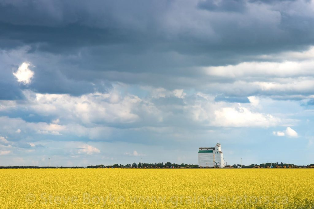 Grain elevator at Harte, Manitoba, July 2020. Contributed by Steve Boyko.