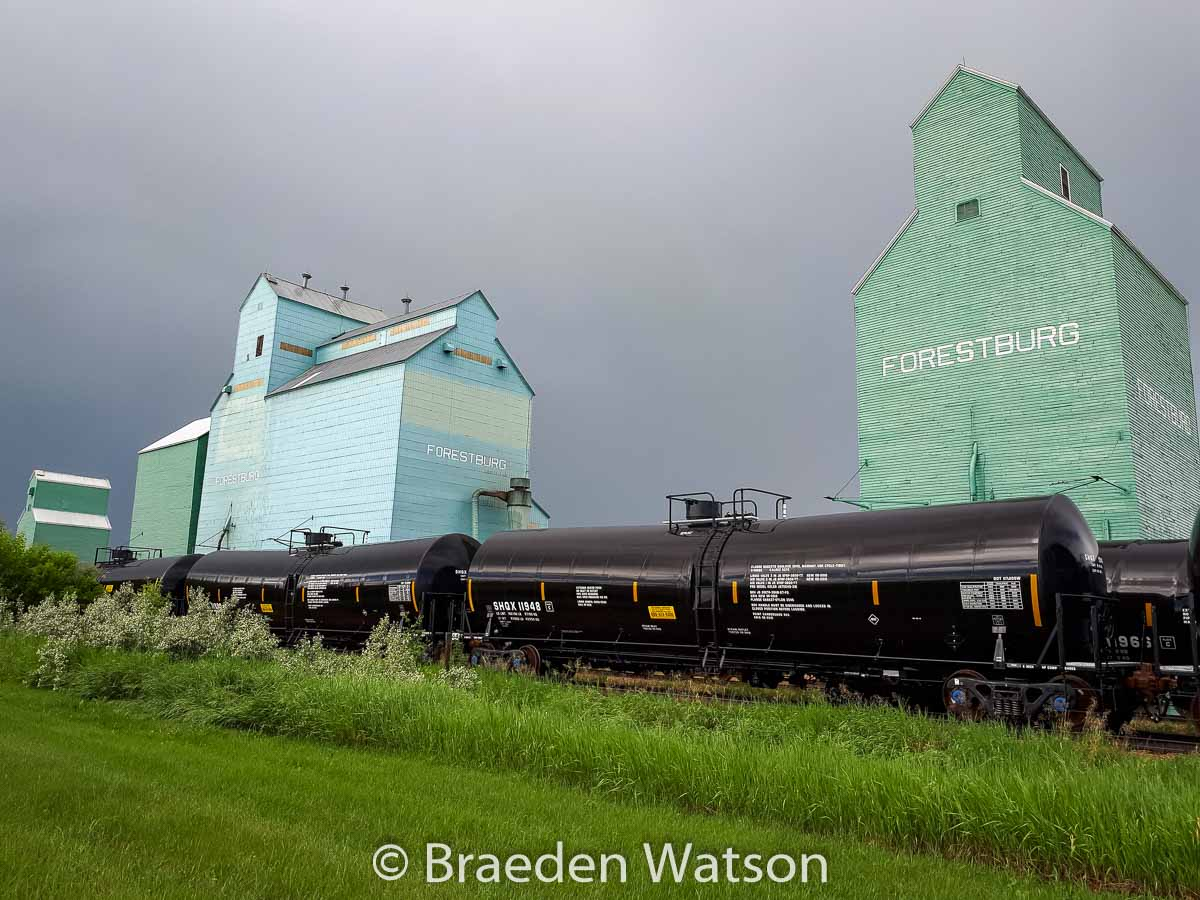 Forestburg AB grain elevators, July 2020. Contributed by Braeden Watson.