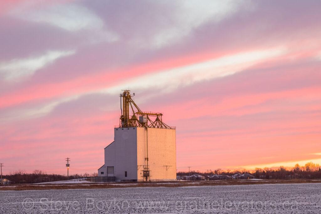 The Elie grain elevator, Jan 2021. Contributed by Steve Boyko.