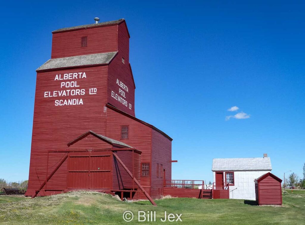 Scandia, AB grain elevator, May 2013. Contributed by Bill Jex.