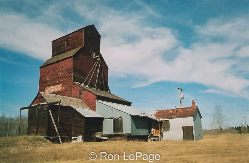 Morningside, AB grain elevator, date unknown. Contributed by Ron LePage.