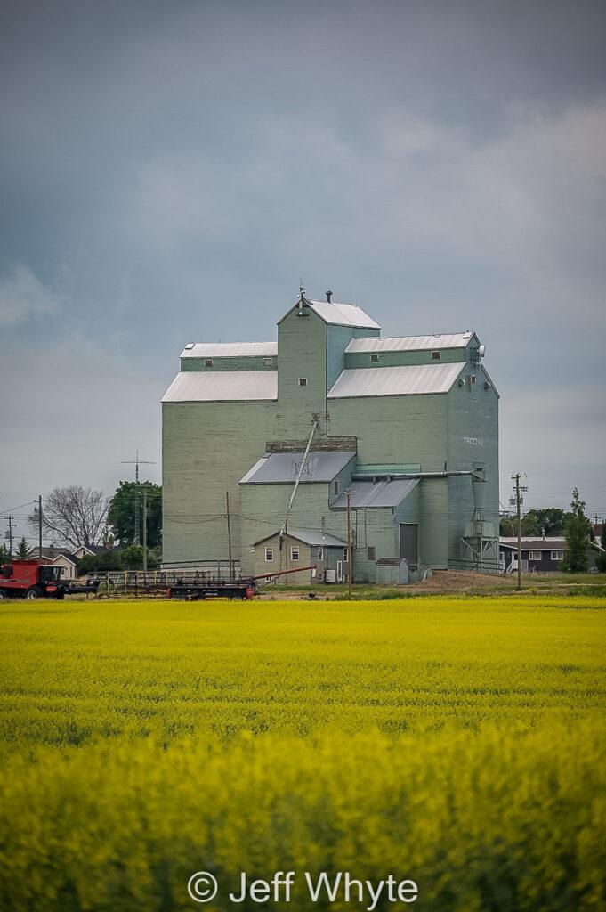 Old Alberta Wheat Pool grain elevator in Trochu, Alberta, July 2021. By Jeff Whyte.
